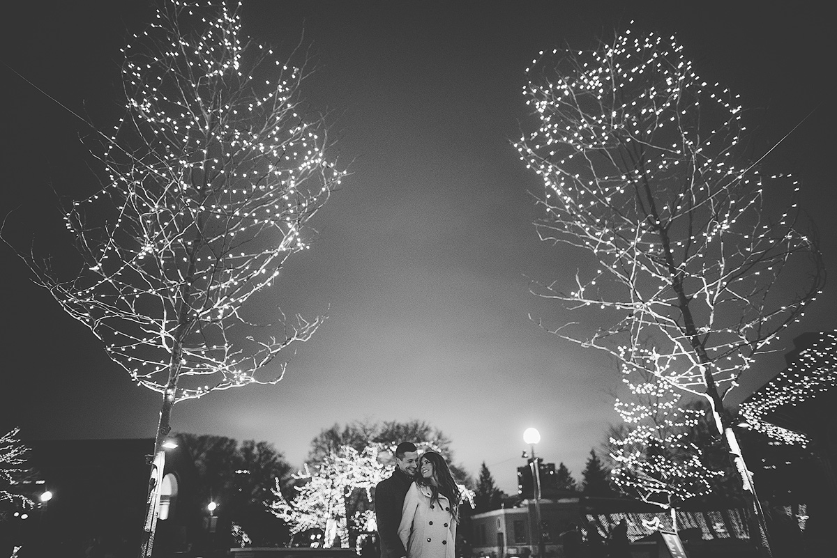 Lincoln-Park-Zoolights-Engagement-Photo